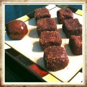 """Keep it easy and roll the mixture into 1"""" balls (see almond ball on far left). Or for entertaining, mold into squares and dip each side of the square in a mixture of 1Tbsp Coco Powder and 1Tbsp Turbinado Sugar. The crunchy outer layer gives this smart snack an indulgent taste. Soooo delicious!"""